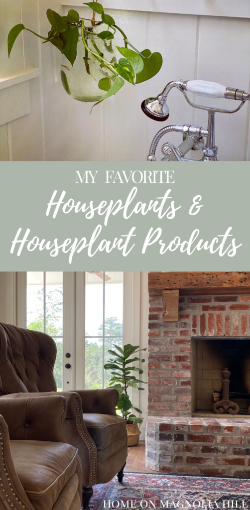 houseplants and houseplant products