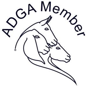 adga member, american diary goat association