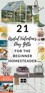valentine's day gifts for the beginner homesteader, backyard chickens, dairy goats, dairy cow, garden