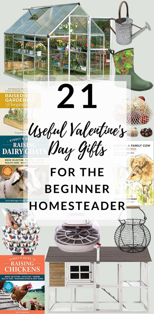 valentine's day gifts for the beginner homesteader, backyard chickens, dairy goats, dairy cow, garden
